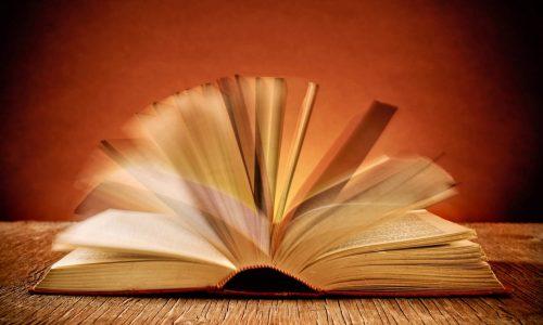 The Speed Reading Secret